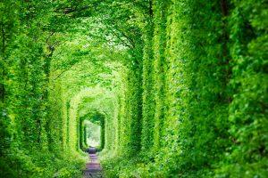 Tunnel der Liebe bei Klewan