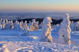 Harzlandschaft im Winter