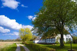 Haus mit traditionelle Reetdach