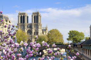 Notre Dame im Frühling